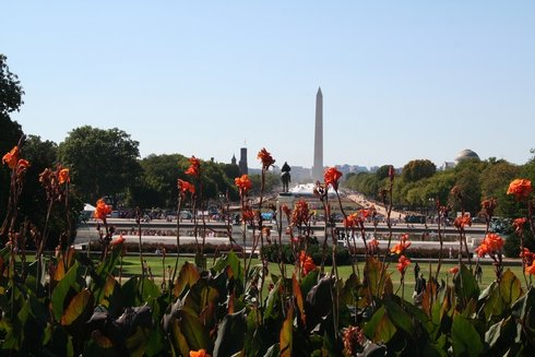 98DC - Washington Memorial3.jpg (38801 bytes)